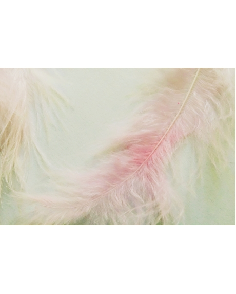 Pene decor roz deschis (5g)