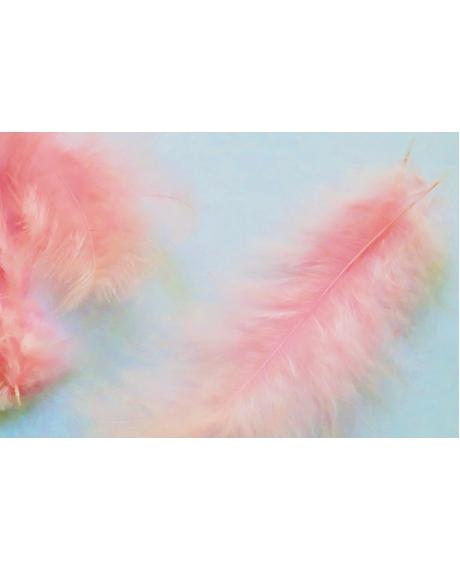 Pene decor roz (100 buc)