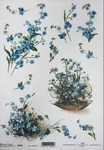 Hartie de orez A4 - Albastrele