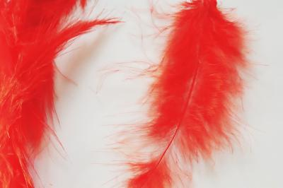 Pene decor rosu (5g)