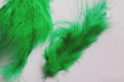 Pene decor verde (5g)