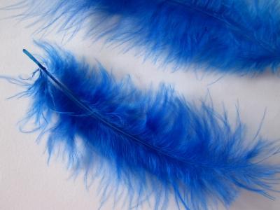 Pene decor albastru inchis (5g)
